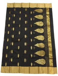 Black Gold Chanderi Silk Cotton Saree