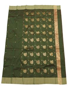 Green Shaded Chanderi Silk Cotton Saree